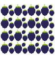 blackberry seamless pattern design vector image