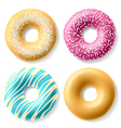 Colorful donuts vector image