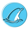 dolphin in sea symbol isolated on vector image