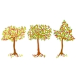 A set of autumn trees vector image