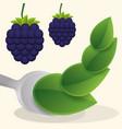 blueberry vegan fruit fresh food vector image