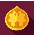 Walnut flat icon Fruit Nut vector image