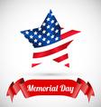 Patriotic United States of America USA vector image
