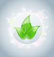 Ecology bubble with green leaves vector image