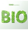 bio with green leaves font vector image
