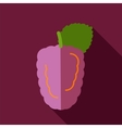 Blackberry bramble flat icon Berry fruit vector image