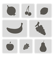 monochrome icons with fruits vector image