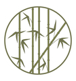 bamboo in circle vector image vector image