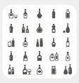 Bottle icons set vector image