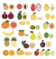 Collection of Fruits icons vector image