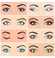 Set of female eyes and brows image with vector image