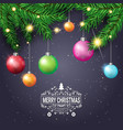 holiday decorations christmas tree branches with vector image