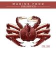 King Crab Marine Food vector image