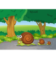 Snails at the road vector image vector image