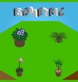 isometric flower set of grower flowerpot vector image
