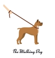 Dog boxer with a leash - on white background vector image