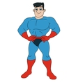 Handsome smiling superhero vector image