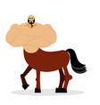 Centaur mythical creature Half horse half person vector image