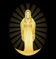 Praying gold virgin mary vector image