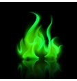 Green Magic Fire Flame Bonfire Isolated vector image