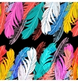 Background multicolored feathers vector image