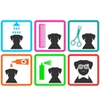 pet care icons vector image vector image