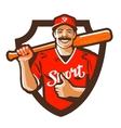 baseball player logo championship vector image