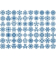 Set of 70 snowflakes vector image