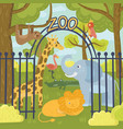wild animals in zoo park giraffe elephant vector image