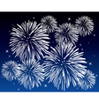 fireworks vector image vector image