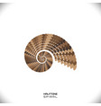 abstract spiral or swirl vector image