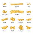 macaroni spaghetti and others type of italian vector image