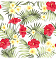 plumeria flowers and jungle palms vector image vector image