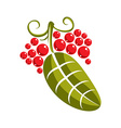 Single flat green leaf with tendrils and red seeds vector image
