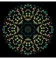 Circle Symmetric Design Round Flower Ornament vector image
