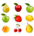 Collection of fruit stickers vector image