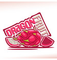 dragon fruit vector image