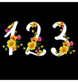 Floral numbers set vector image