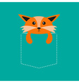 Fox in the pocket Cute cartoon character Dash line vector image