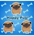 Three happy dogs on a blue background with bones vector image