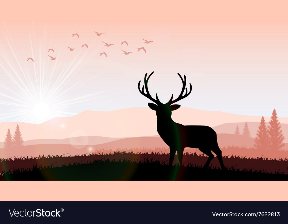 Silhouette a deer the feeding in the bright sunset vector