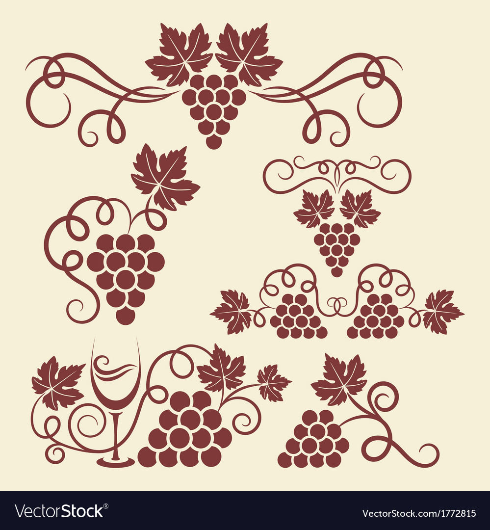Grape vine elements vector