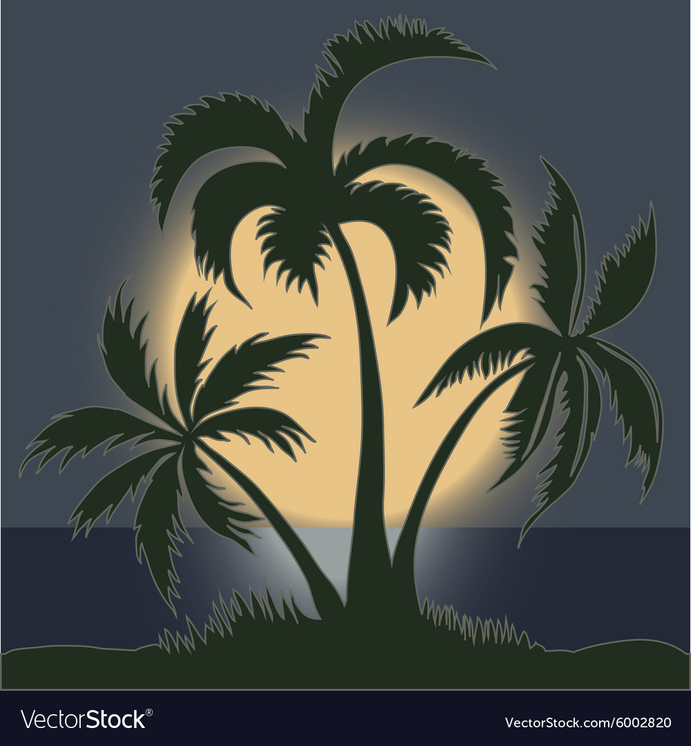Palms in the moonlight on the beach  vector