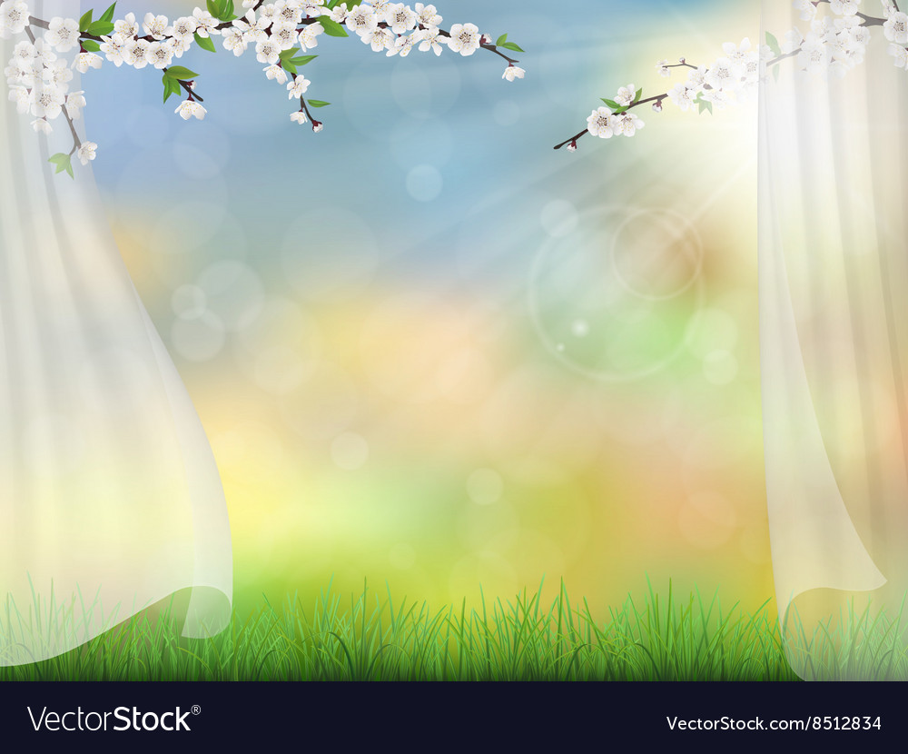 Spring background with curtain vector