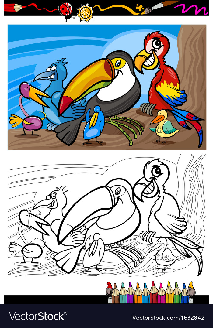 Exotic birds group for coloring book vector
