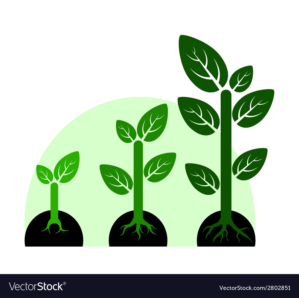 Profit growth concept vector