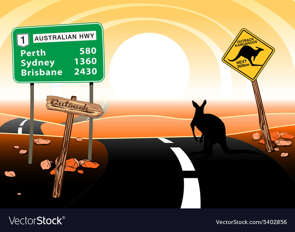 Kangaroo standing on road in the australian vector