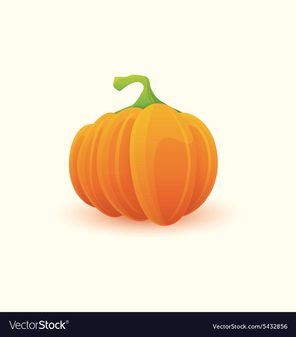 Pumpkin 3 vector