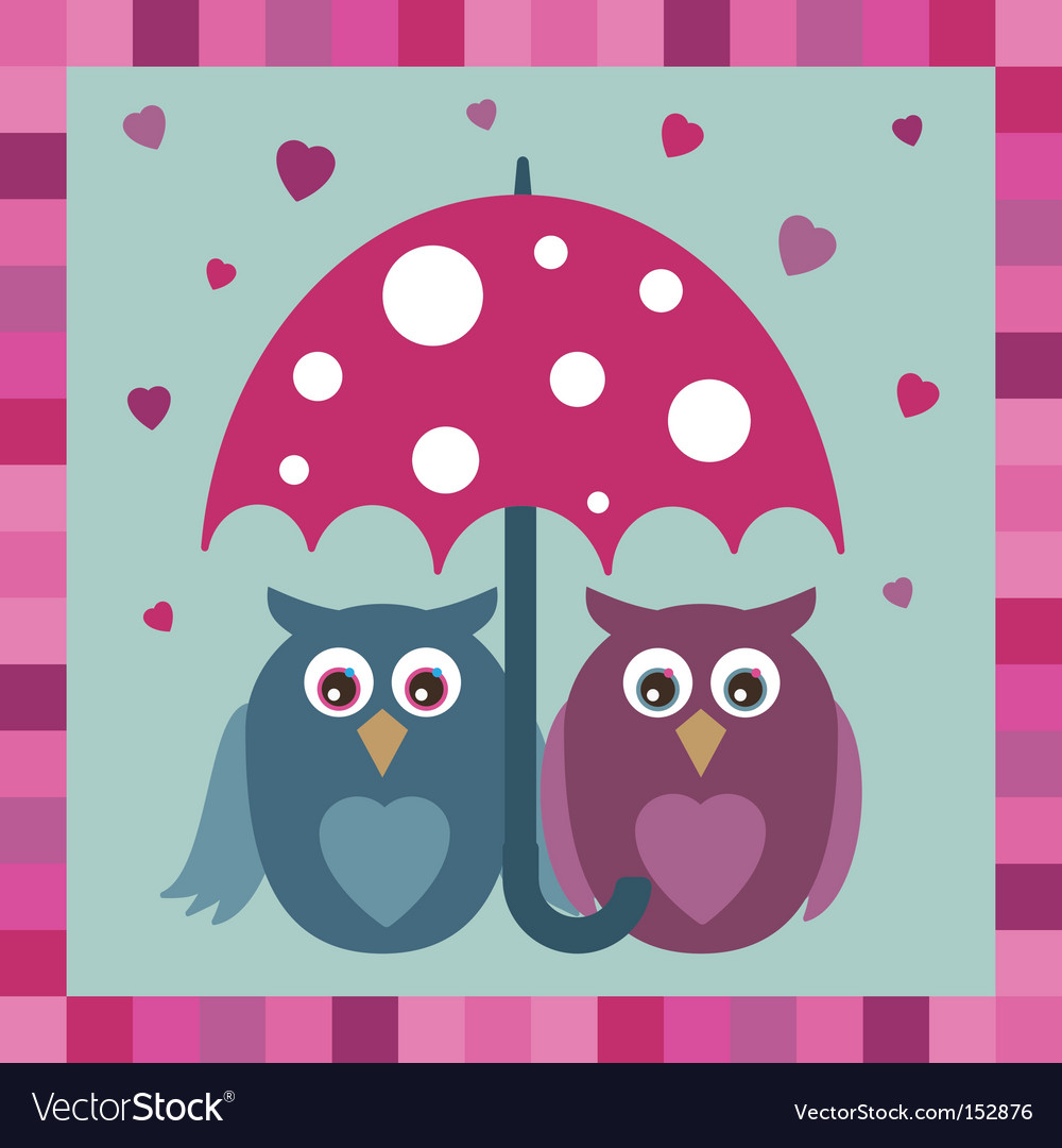 Love owls vector
