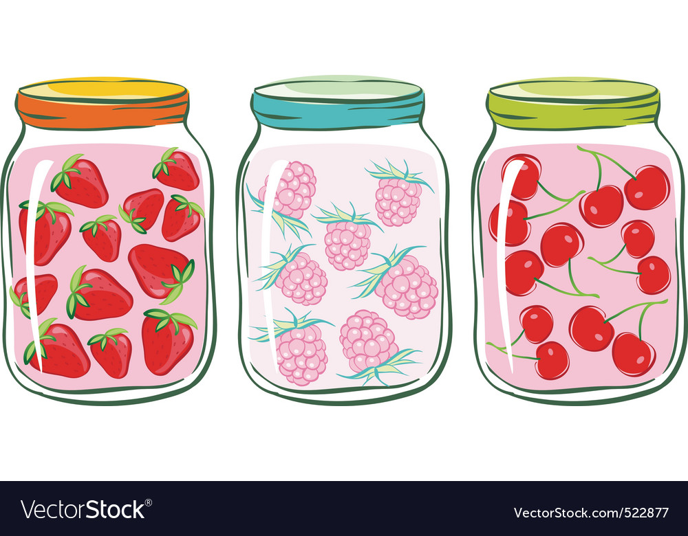 Fruit jar vector